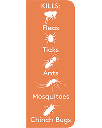 flee-ready-to-use-yard-spray-insects